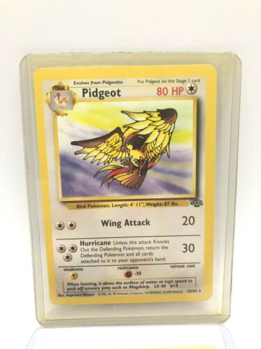 Pidgeot 24//64 1st Edition NM Near Mint Jungle Set Rare Non-Holo Pokemon Card