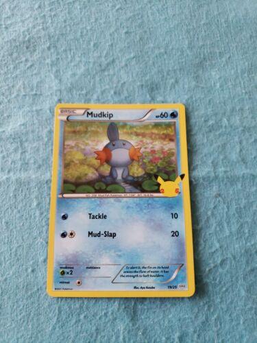 2021 Pokemon McDonald's 25th Anniversary Mudkip Holo Card 19/25 Nintendo