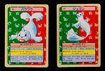 Dewgong Seel Topsun Pokemon Cards 1995 Green (1548a)